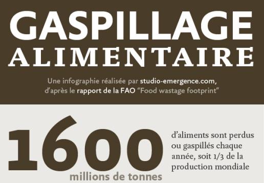 extrait-gaspillage-alimentaire_52398048ce0c4